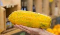 Fresh Papaya from Brazil