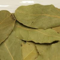 High Quality Natural Spices Bay Leaf