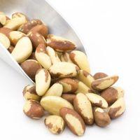 100% Pure Natural Peru High Quality Brazil Nuts Wholesale