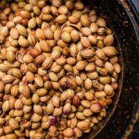Coriander Seeds Wholesale high quality pure seeds split bulk Coriander Caraway seeds plant