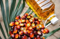 TOP GRADE REFINED PALM OIL