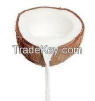 Coconut Cream, Milk and Powder