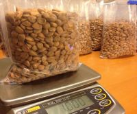 Apricot Kernels, cashew nut, pistachos, , macademia nuts, chesnuts, betel nuts