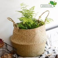 Natural Round Seagrass Belly Basket with Handles, Eco friendly Woven Storage Basket