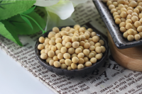 Soybeans | High Quality Agricultural Products