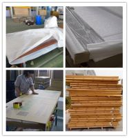 100% waterproof 2mm-5mm pvc laminated full wpc hollow swing wpc pure door