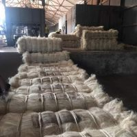 High Quality UG and SSUG Natural sisal fiber / sisal fibre