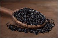Nigger seeds