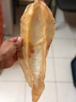DRIED FISH MAW CORVINA PANAMA