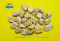 Yellow Pebble