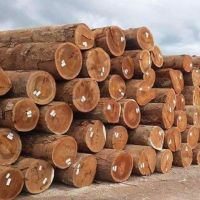 Timber Logs, Hard/Soft Wood.