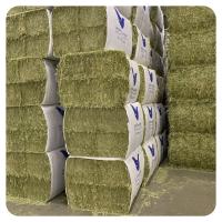 Fresh Alfalfa Hay for Animal feed Natural Cattle Alfalfa Hay Animal Feed for sale