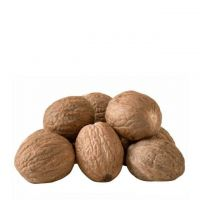 Hot Selling  Nutmeg