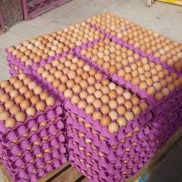 Fresh Brown / White Farm Chicken Eggs