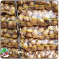Top Iranian potato