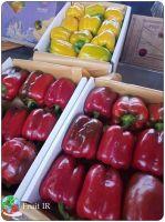 Fresh Top quality Bell Pepper, Sweat Pepper, Capsicum