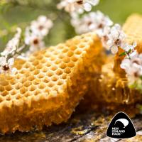 Manuka Honey  MGO 514+ (bulk)