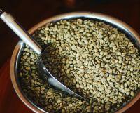 Coffee Gayo Aceh