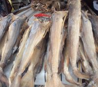 WHOLE DRIED STOCK FISH, COD, HAITHE, HADDOCK, DRIED STOCK FISH HEADS