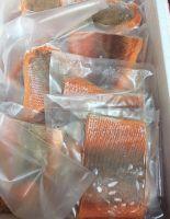 HIGH QUALITY FRESH FROZEN FISH SALMON