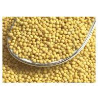 Mustard Seeds Black White Yellow Mustard Seeds Brown Mustard Seeds