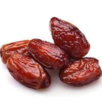 High Quality Fresh dried Delicious Arabian Dates