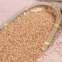 Quality Natural Sesame Seeds
