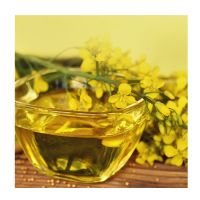 Wholesale Price Refined Canola Oil Supply in Bulk