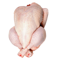 Halal/Non Halal Brazilian Frozen Chicken whole And Chicken Parts