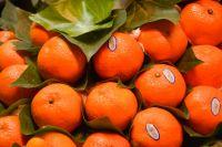 Fruits, Mandarin, Kinnow, Citrus