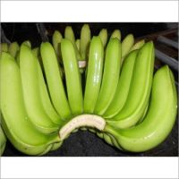 IMPORTED CAVENDISH BANANA