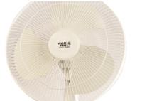 Pedestal Fan (PAK FANS)