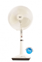 NTCP Pedestal Fan (PAK FANS)