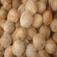 Husked Matured Coconut