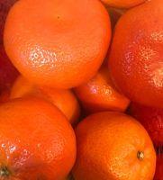 Sweet Fresh Tangerine