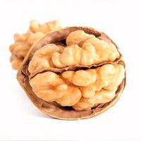 Paper Shell Raw Walnuts with Discount For Bilk Orders