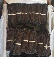 Organic Cultivated Gourmet vanilla beans from Madagascar, Bourbon vanilla,Black Vanilla Bean Farm Price