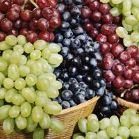 Quality Fresh Seedless Grapes Available in All Colors