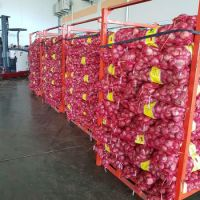 Best Quality Fresh Yellow Onion, Red Onion and White Onion For Sale