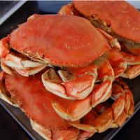 Live / Red Norwegian King Crab from Alaska King Crab