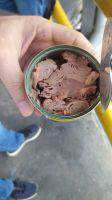 Tuna whole raw, Tuna loins and Tuna canned
