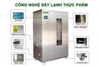 Vietnam Natural Healthy Pumpkin Vegan No Additive Freeze-dried Noodle