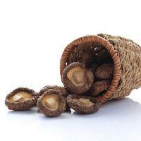 Organic Healthy Snack High Quality Fresh Shitake Mushrooms Dried