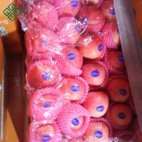 red fuji apple fresh apple with China supplier