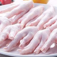 Supplier chicken paws for export - Brazil Origin