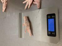 Clean Halal Chicken Feet / Frozen Chicken Paws Brazil / Fresh chicken wings and foot