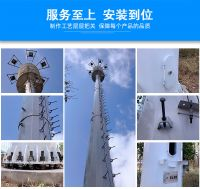 Telecommunication Tree Steel Monopole Tower/Camouflaged Pine Tree Tower