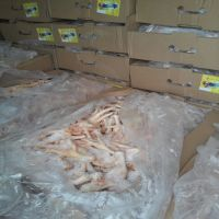 Fresh and Clean Halal Frozen Whole Chicken /Drumsticks/ Thighs/ Paws/ Feet