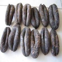 Dried Sea Cucumber Cheap High quality