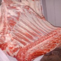Halal Top Quality Meat / Halal Frozen Beef Meat / Body Beef COW and BUFFALO all parts